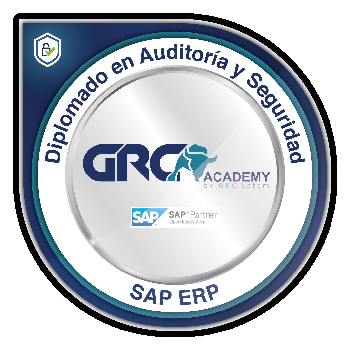 Diplomado en Auditoría y Seguridad SAP ERP
