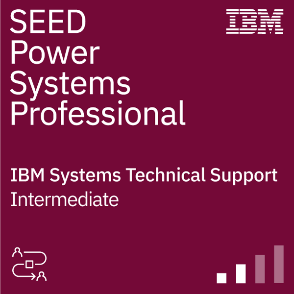 SEED Technical Support Professional - Power Systems