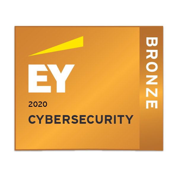 EY Cybersecurity - Bronze