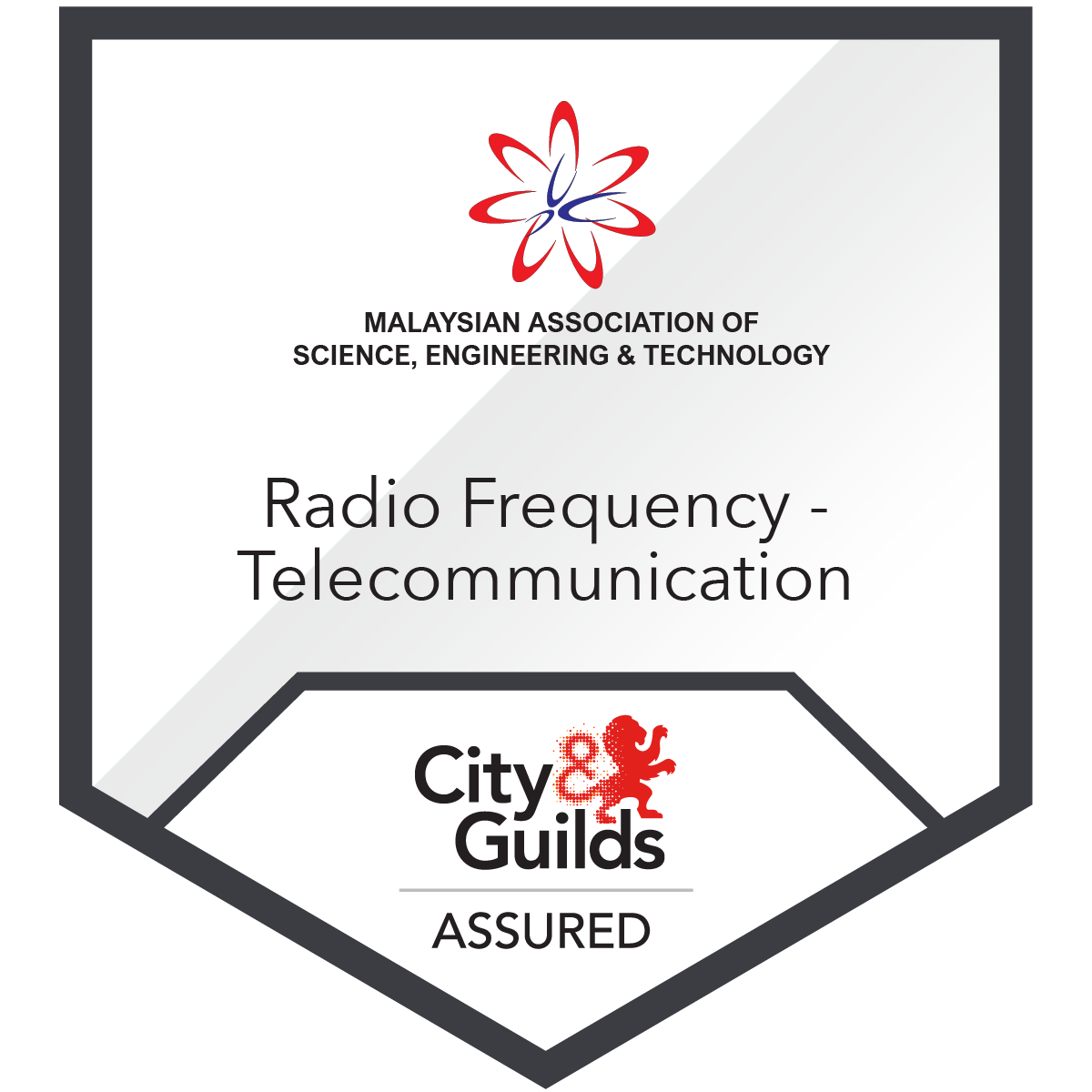 Radio Frequency Network Installation & Maintenance -Telecommunication