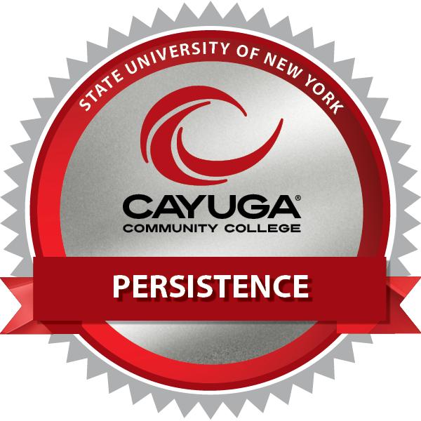 Persistence '21