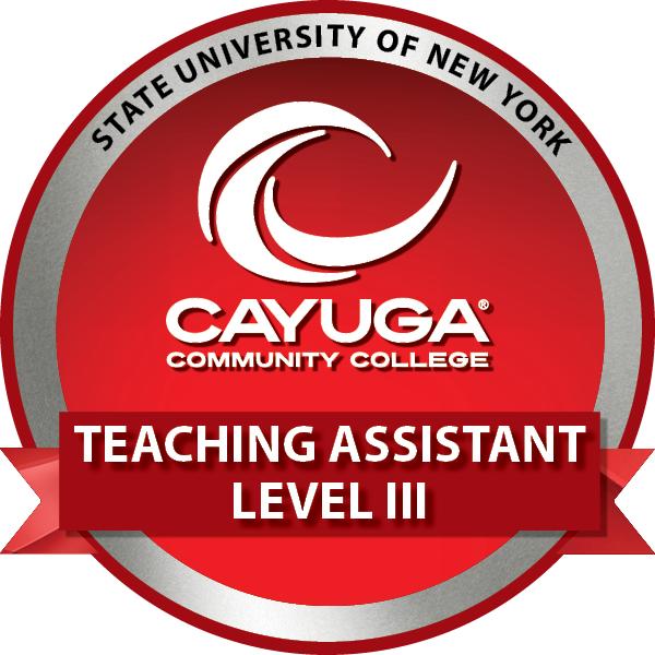 Teaching Assistant Level III