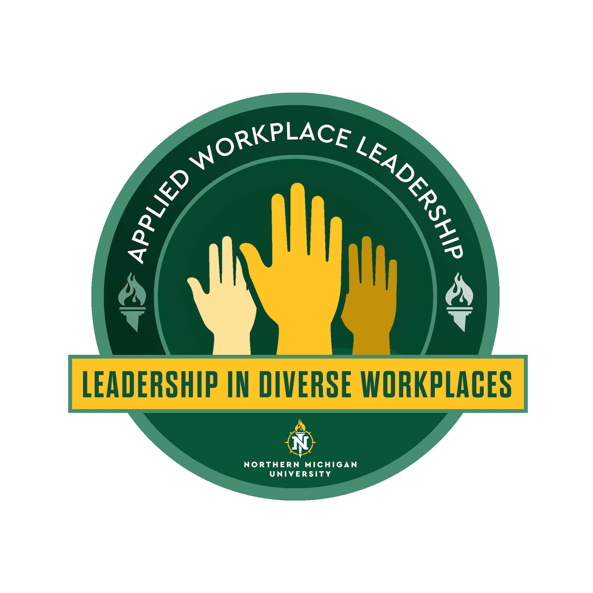 Leadership in Diverse Workplaces - LDR 300