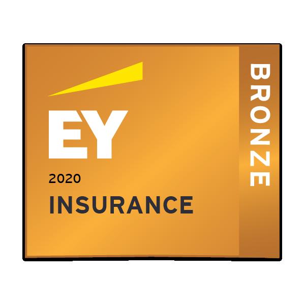 EY Insurance - Bronze