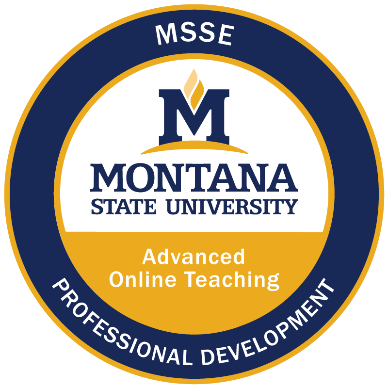 Advanced Online Teaching