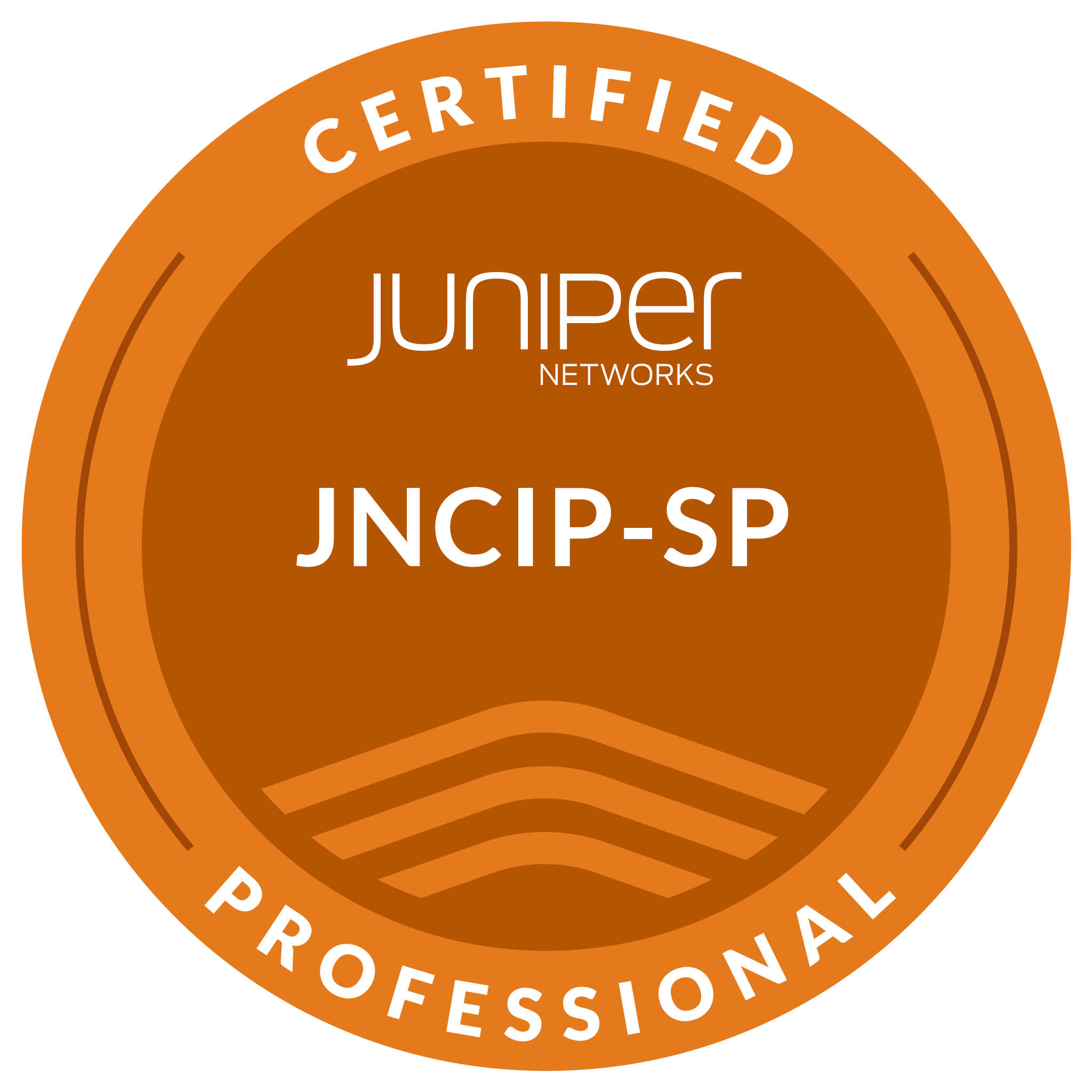 Juniper Networks Certified Professional, Service Provider Routing & Switching (JNCIP-SP)