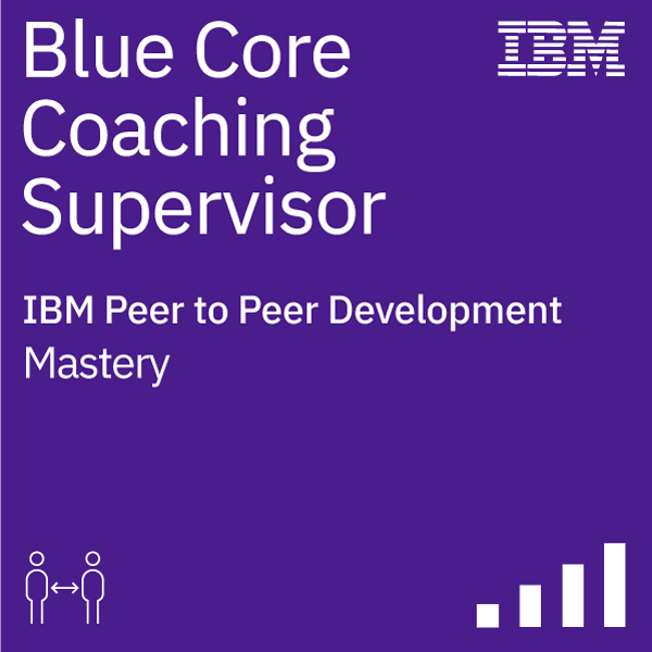 Blue Core Coaching Supervisor