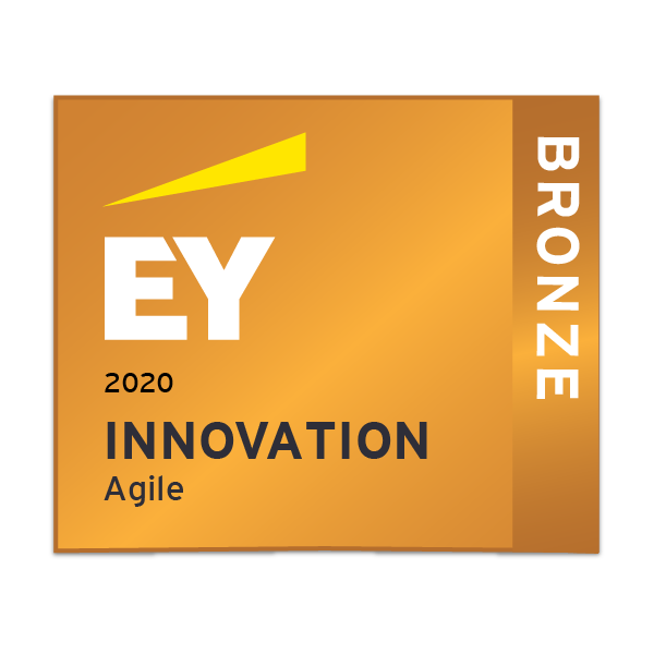 EY Innovation - Agile- Bronze