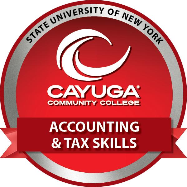 Accounting & Tax Skills