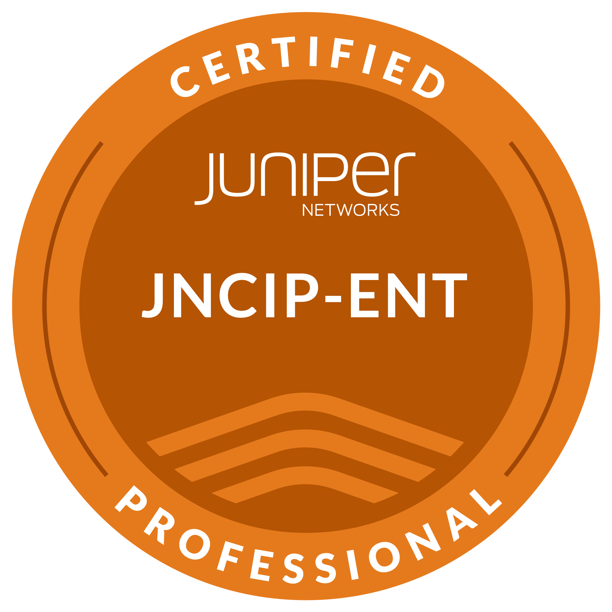 Juniper Networks Certified Professional, Enterprise Routing & Switching (JNCIP-ENT)