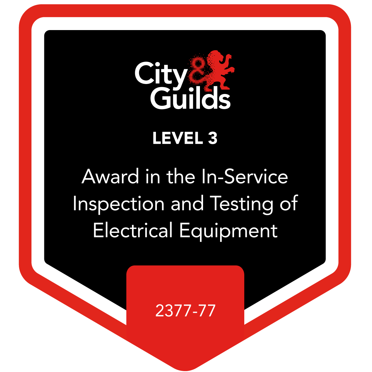 Level 3 Award in the In-Service Inspection and Testing of Electrical Equipment 2377-77