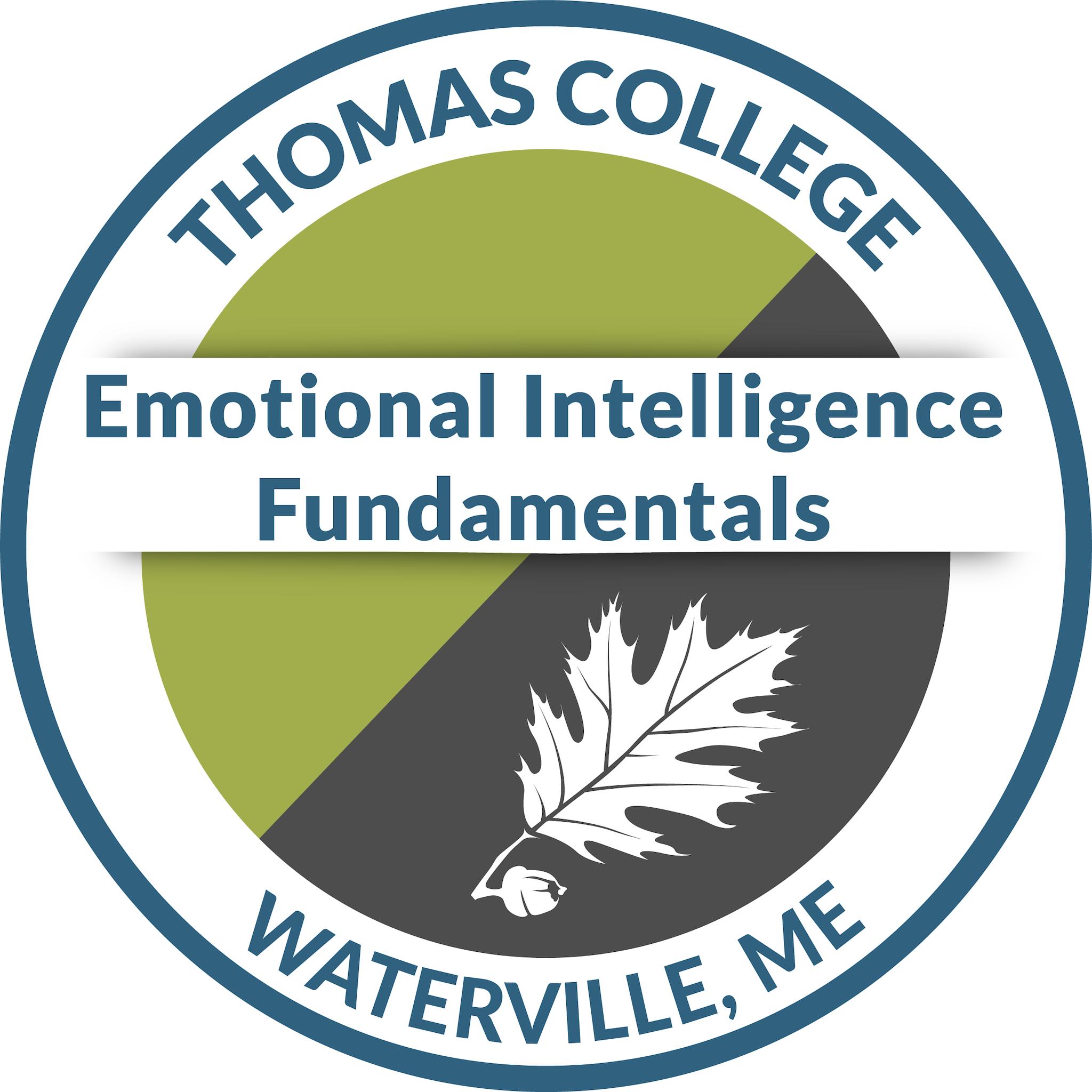 Emotional Intelligence Fundamentals