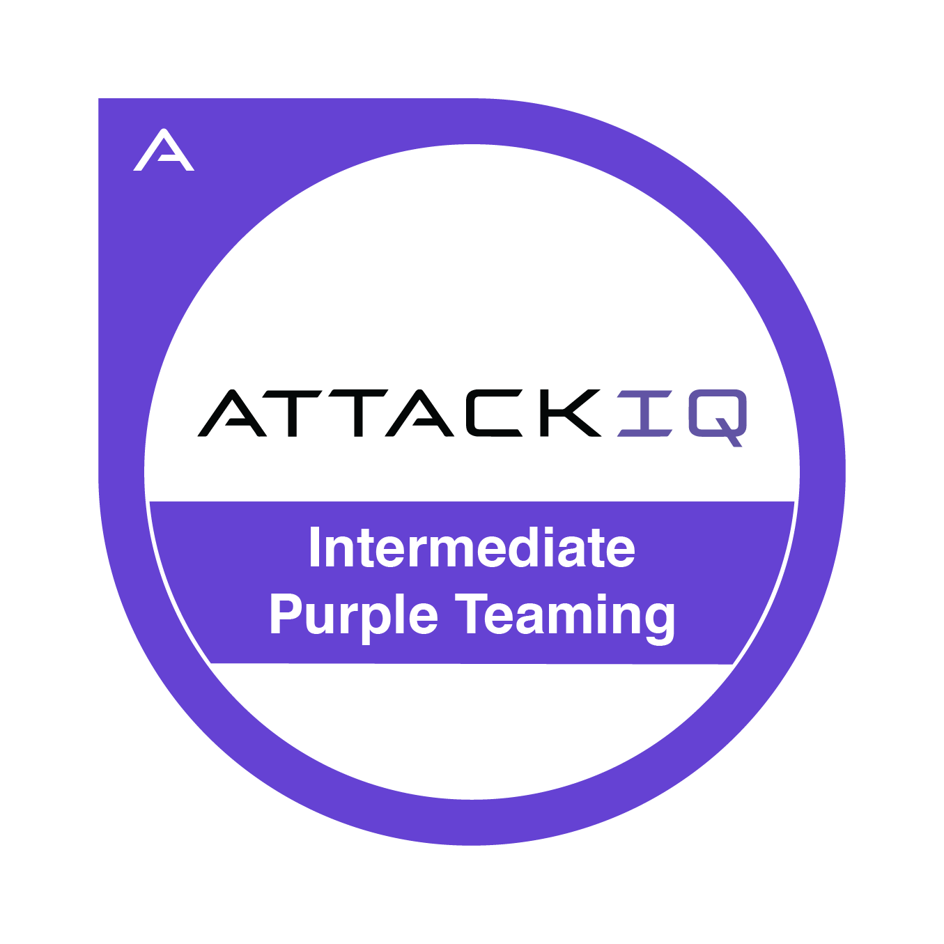 Intermediate Purple Teaming