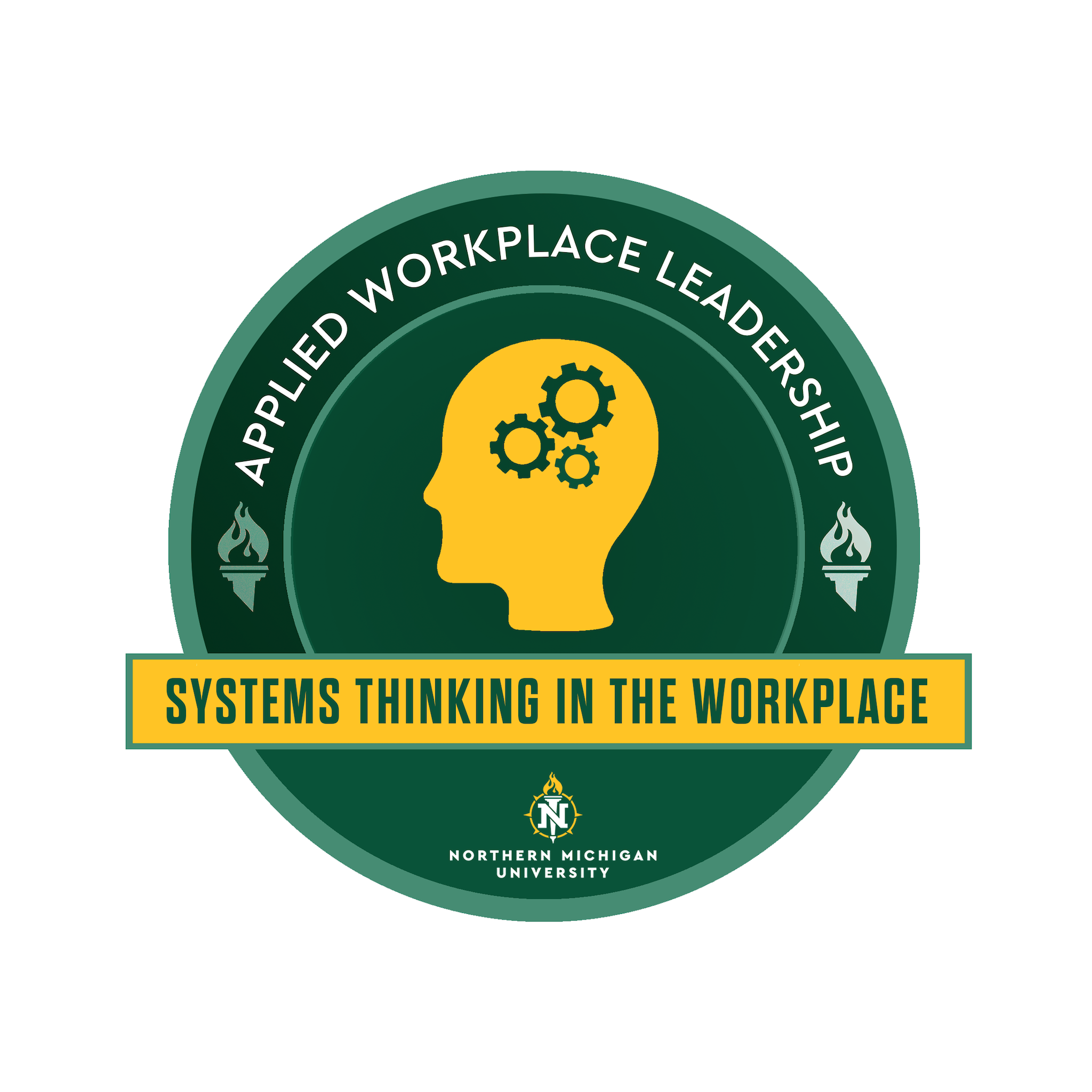 Systems Thinking in Workplace Leadership - LDR 400