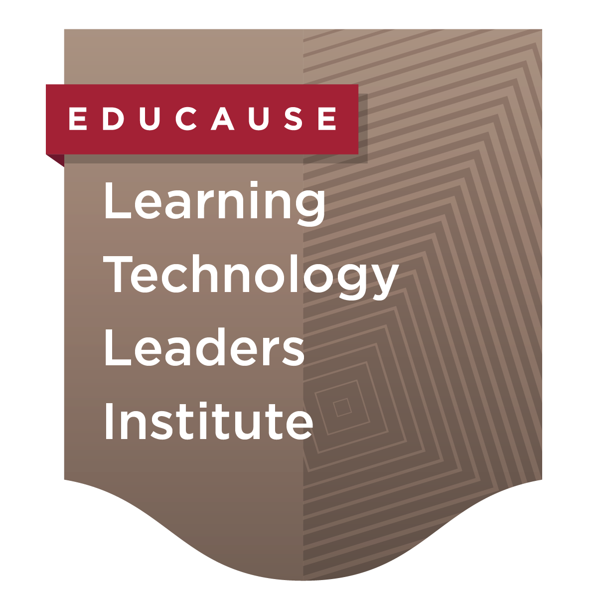 Learning Technology Leaders Institute
