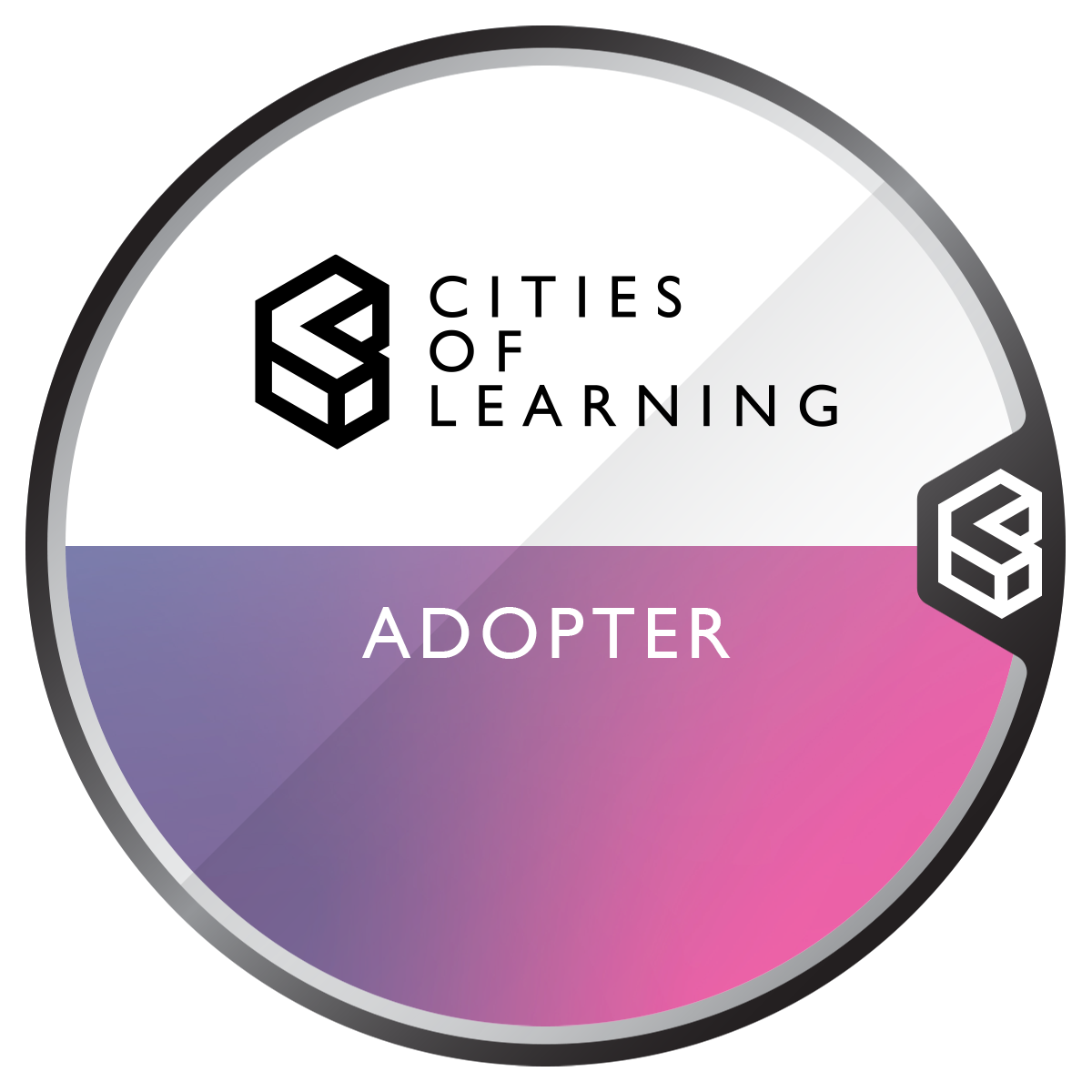 Cities of Learning Programme Adopter