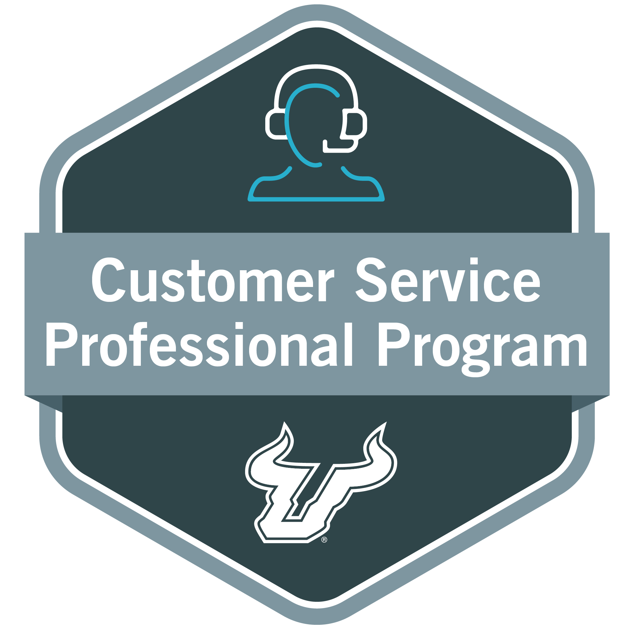 Customer Service Professional Program Stack-A-Bull