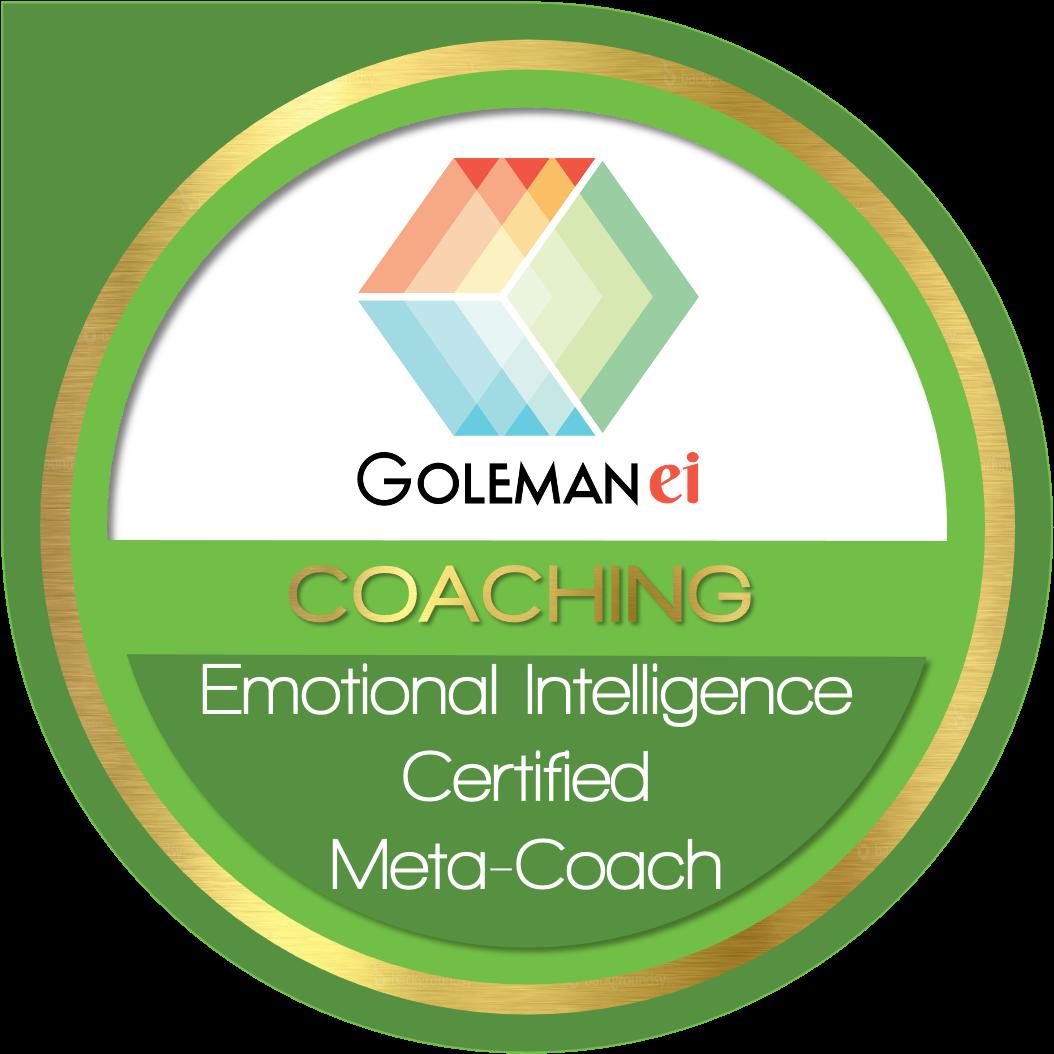 Emotional Intelligence Certified Meta-Coach