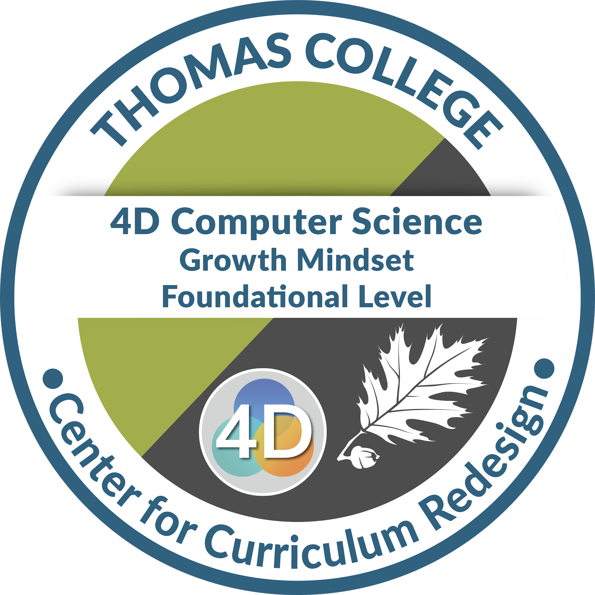 4D Computer Science: Growth Mindset