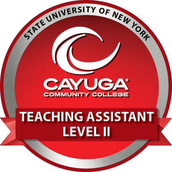 Teaching Assistant Level II