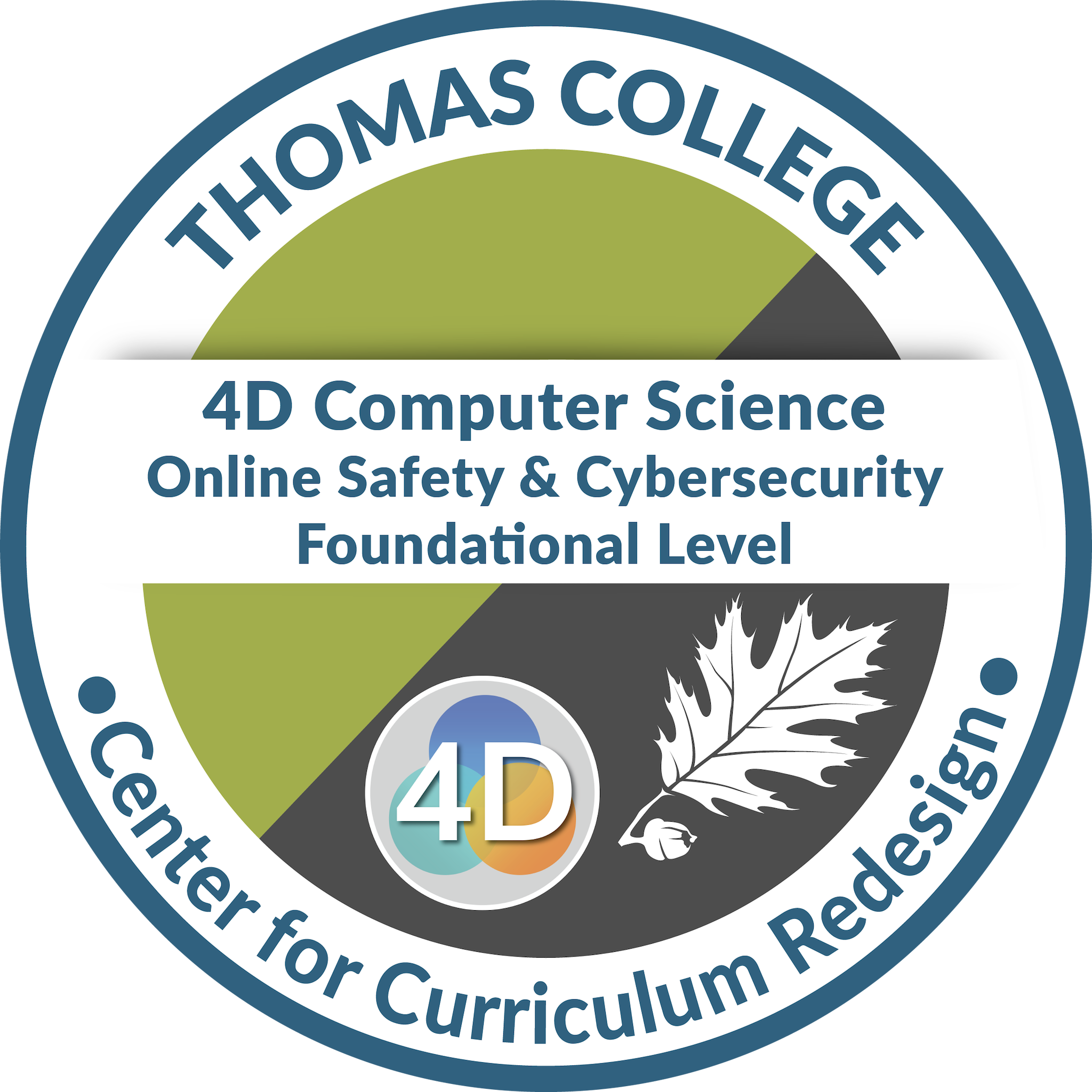 4D Computer Science: Online Safety & Cybersecurity