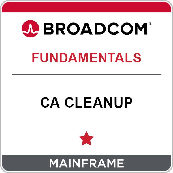 CA Cleanup - Key Concepts