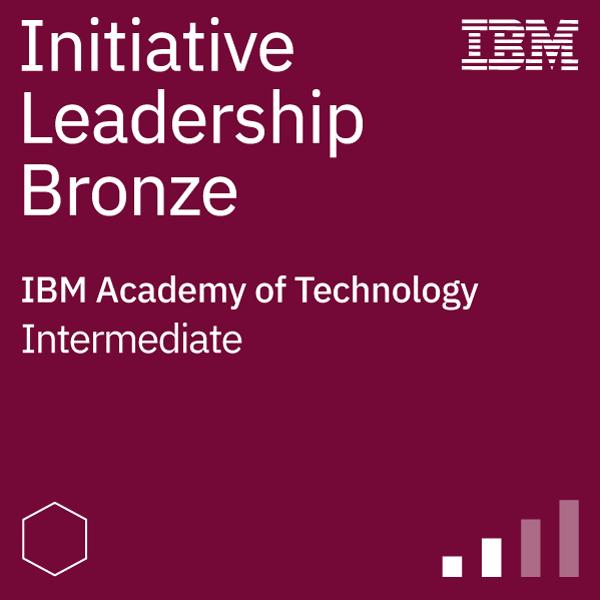 Initiative Leadership - Bronze Level