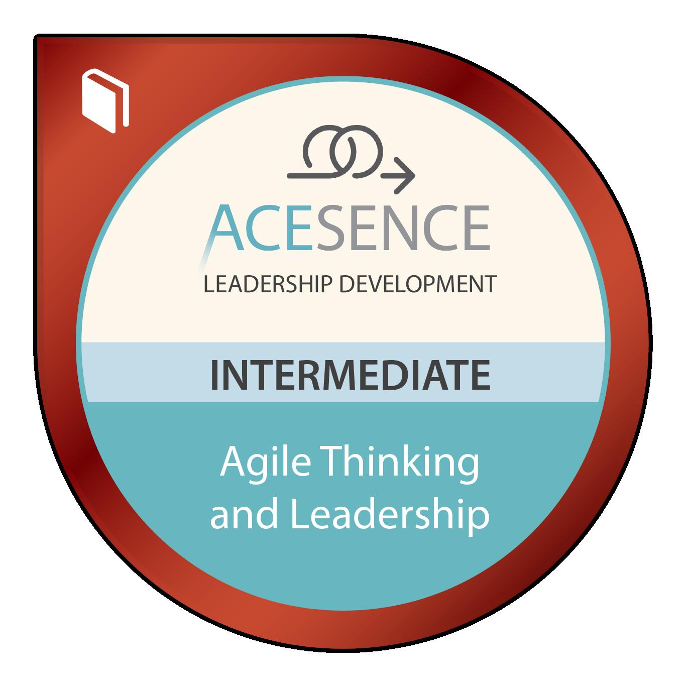 Agile Thinking and Leadership – Intermediate
