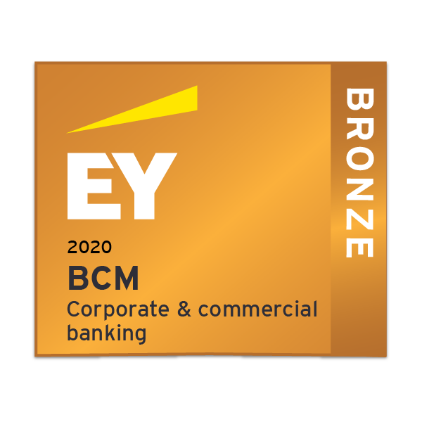 EY Banking & capital markets - Corporate & commercial banking - Bronze
