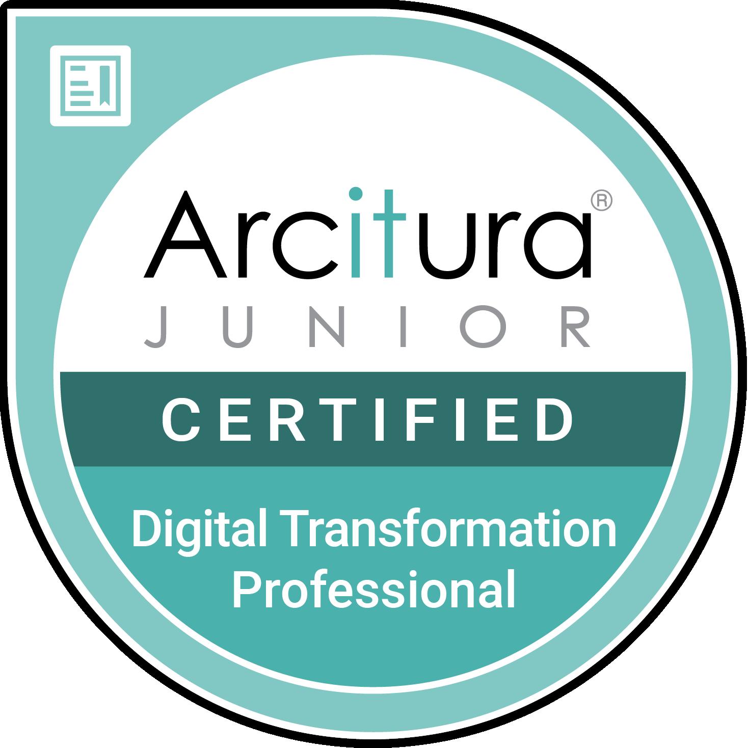 Junior Digital Transformation Professional