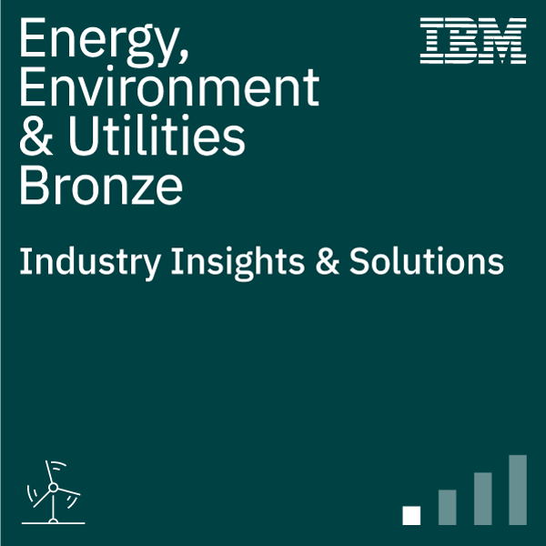 Energy, Environment & Utilities Insights & Solutions (Bronze)
