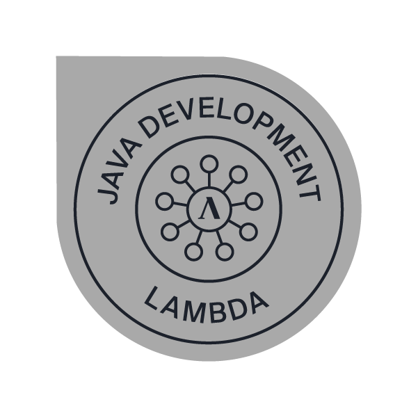 Full Stack Web Development Java + Technical Interviewing