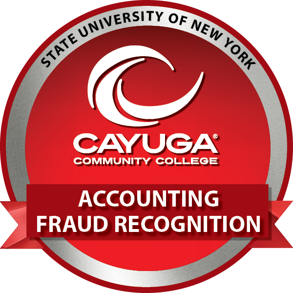 Accounting Fraud Recognition