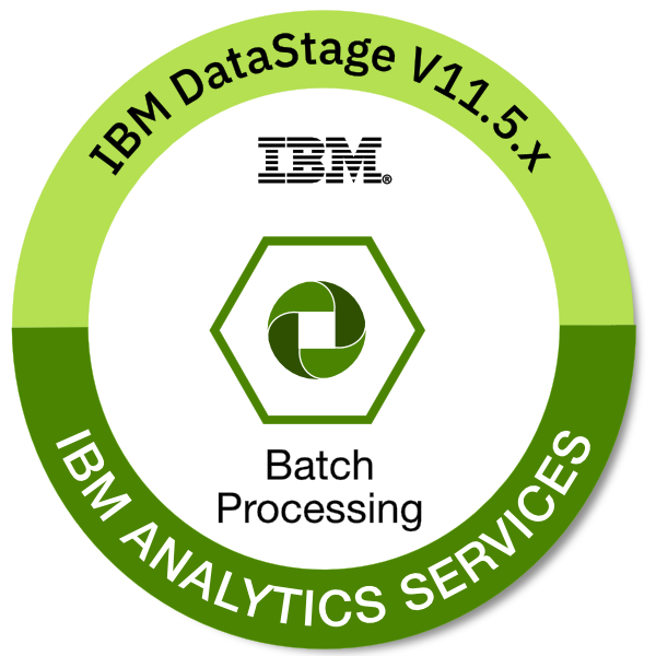 IBM DataStage V11.5.x Batch Processing