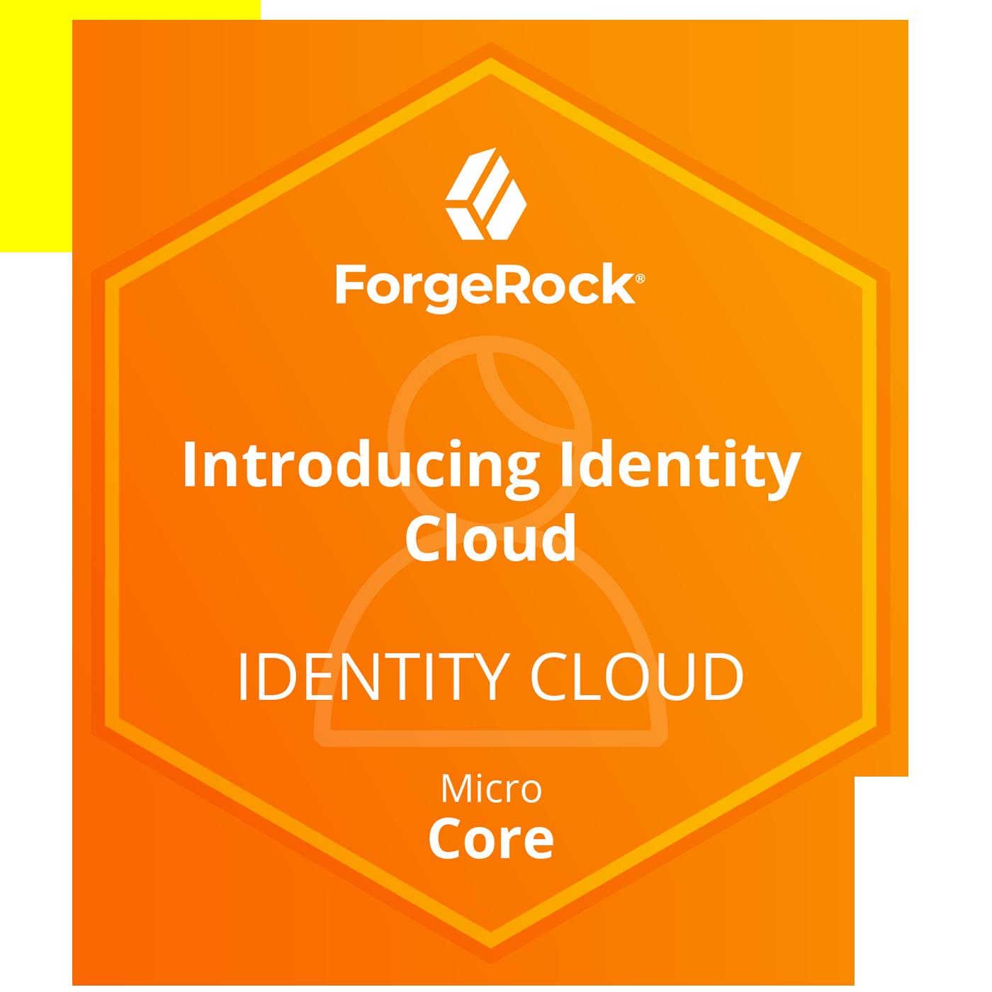 ForgeRock Identity Cloud Micro Core Skills - Introducing ForgeRock Identity Cloud