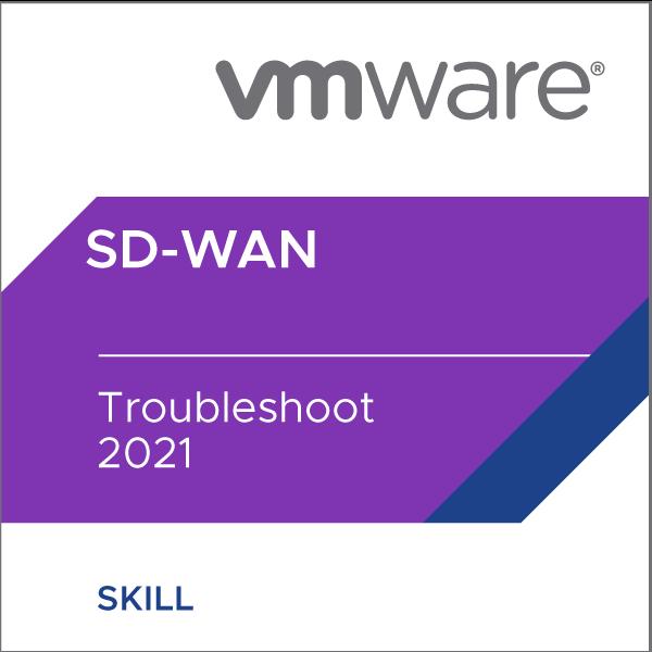 VMware SD-WAN Troubleshoot 2021