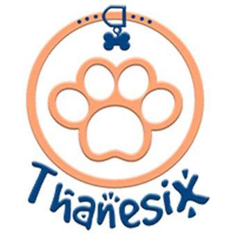 Thanesix Com