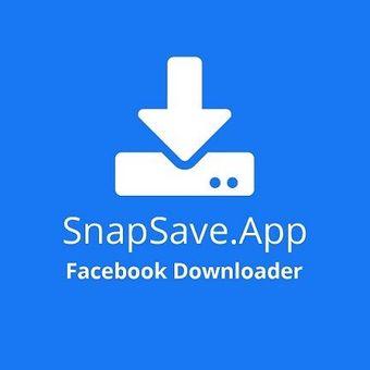 SnapSave Facebook Video Downloader
